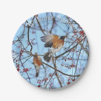 American robin 7 inch paper plate