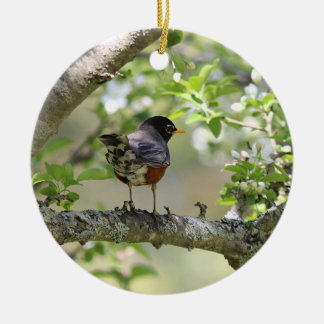 American Robin and Spring Blossoms Round Ceramic Decoration