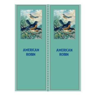 American Robin Bookmarks Postcard