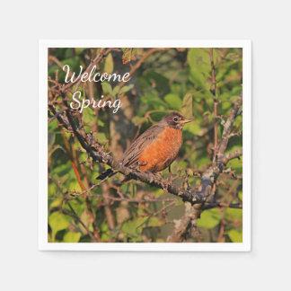 American robin disposable serviettes