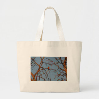 American Robin home to roost Tote Bags