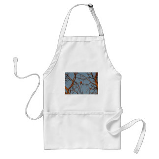 American Robin home to roost Standard Apron