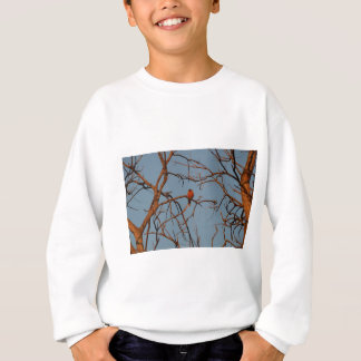American Robin home to roost Sweatshirt
