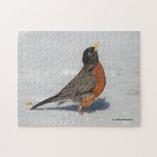 American Robin in the Snow Jigsaw Puzzle