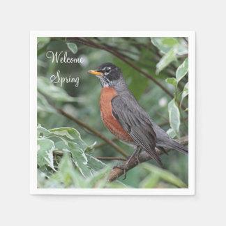 American robin paper napkins