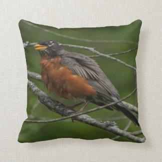 American Robin Photo #2 Cushion