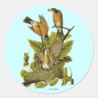 American Robin Round Sticker