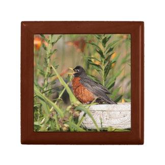 American Robin Small Square Gift Box