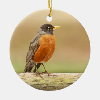 American Robin Standing Christmas Ornament