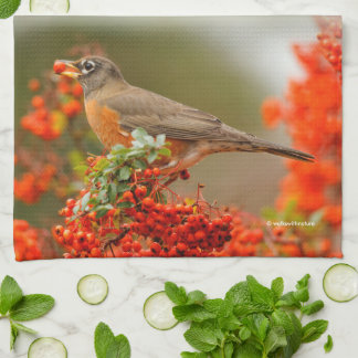 American Robin with a Pyracantha Pomme Tea Towel
