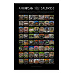 """""""American Salticids"""" Jumping Spider Faces Poster"""