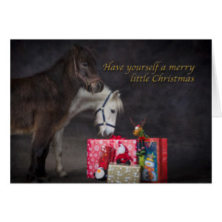 American Shetlands opening their Christmas present Greeting Card