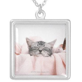 American Shorthair 10 Square Pendant Necklace