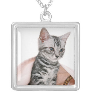 American Shorthair 2 Silver Plated Necklace