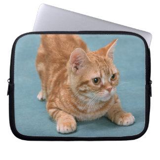 American Shorthair 3 Laptop Sleeve