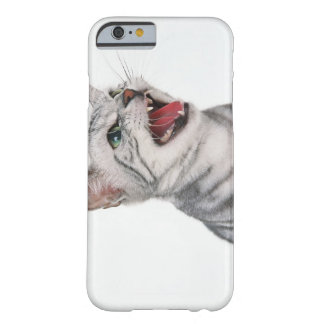American Shorthair 6 Barely There iPhone 6 Case