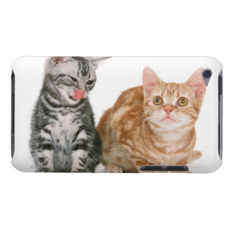 American Shorthair 9 Barely There iPod Cover