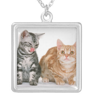 American Shorthair 9 Silver Plated Necklace