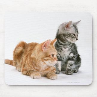 American Shorthair Cat 2 Mouse Mat