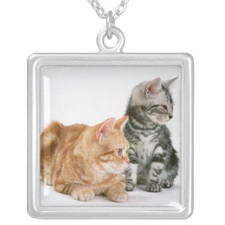 American Shorthair Cat 2 Silver Plated Necklace
