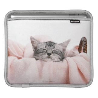 American Shorthair Cat iPad Sleeve