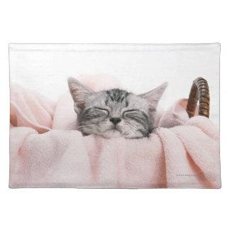American Shorthair Cat Placemat