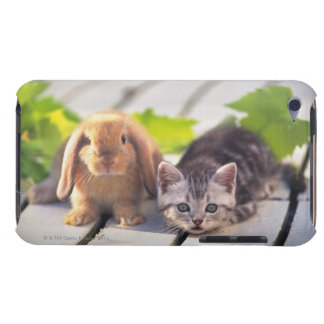 American Shorthair; is the most popular and most iPod Case-Mate Case