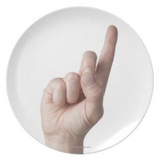 American Sign Language 12 Plate