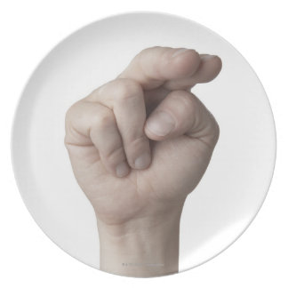 American Sign Language 16 Plate