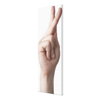 American Sign Language 7