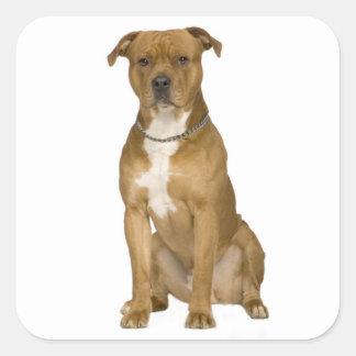 American Staffordshire Terrier Dog Sticker Seals