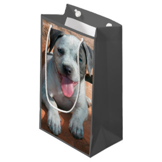 American Staffordshire Terrier puppy Portrait Small Gift Bag