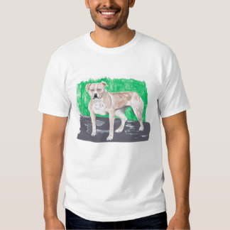 American Staffordshire Terrier T Shirts