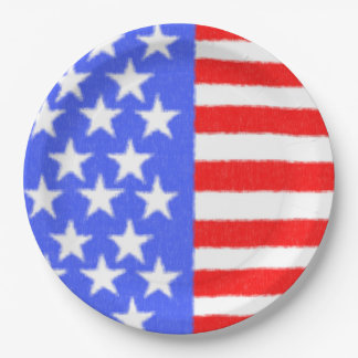 American style-ART fabric Paper Plate