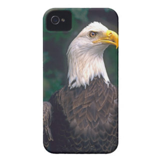 American Symbol of Freedom The Bald Eagle in the Case-Mate iPhone 4 Cases