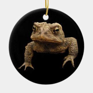 American Toad Round Ceramic Decoration