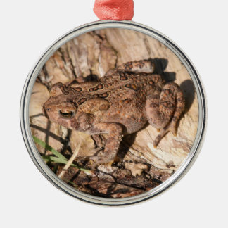 American Toad Silver-Colored Round Decoration