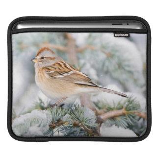 American Tree Sparrow in winter iPad Sleeve