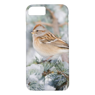 American Tree Sparrow in winter iPhone 8/7 Case