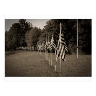 American Veteran Flags Postcard