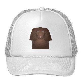 American Water Spaniel Cartoon Trucker Hats