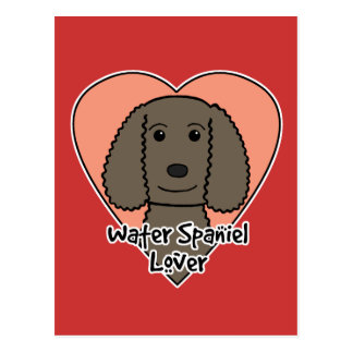 American Water Spaniel Lover Postcard