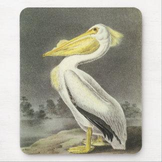 American White Pelican by Audubon Mouse Mat