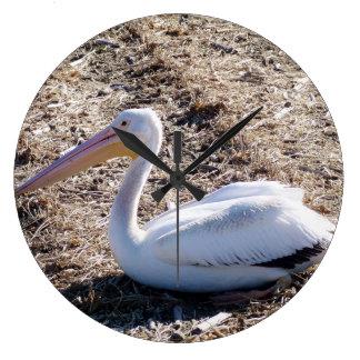 American White Pelican Round Wall Clock