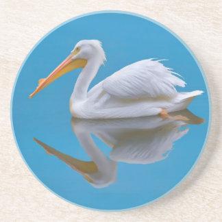 American White Pelican Coaster