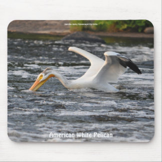 American White Pelican Fishing on River Rapids Mouse Pads