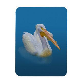 American White Pelican Flexible Magnet