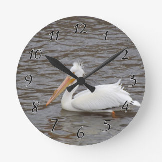 American White Pelican In Breeding Condition Clocks