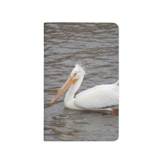 American White Pelican In Breeding Condition Journals