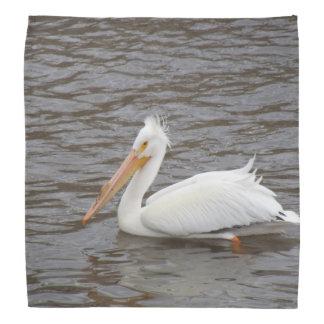 American White Pelican In Breeding Condition Kerchief